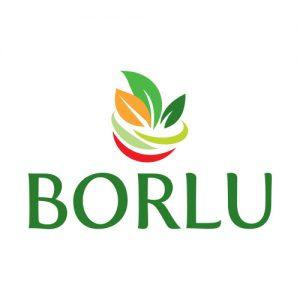 BORLU